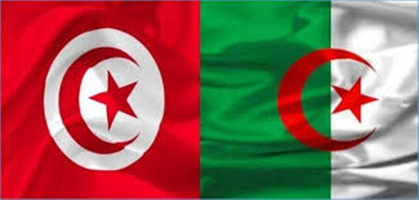 Lutte Contre Le Covid 19 L Algerie Et La Tunisie Veulent Etablir Une Cooperation Commune Maghreb